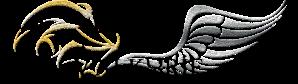 Black Valkyrie Emblem